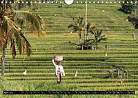 Bali - Indonesien (Wandkalender 2019 DIN A4 quer) - Produktdetailbild 4