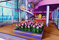 Barbie präsentiert Elfinchen - Produktdetailbild 6