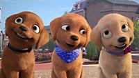 Barbie und ihre Schwestern in: Das große Hundeabenteuer - Produktdetailbild 6