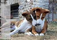 Basenji the African Barkless Dog (Wall Calendar 2019 DIN A4 Landscape) - Produktdetailbild 3
