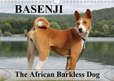 Basenji the African Barkless Dog (Wall Calendar 2019 DIN A4 Landscape), Petra WOBST