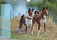 Basenji the African Barkless Dog (Wall Calendar 2019 DIN A4 Landscape) - Produktdetailbild 9
