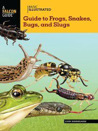 Basic Illustrated Guide to Frogs, Snakes, Bugs, and Slugs, John Himmelman