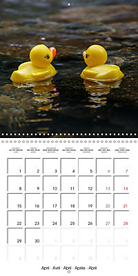 Bath duck Race (Wall Calendar 2019 300 × 300 mm Square) - Produktdetailbild 4