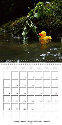 Bath duck Race (Wall Calendar 2019 300 × 300 mm Square) - Produktdetailbild 1