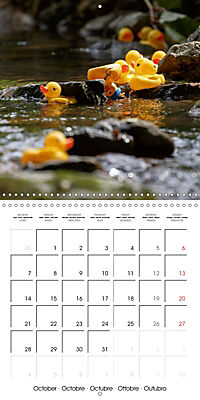 Bath duck Race (Wall Calendar 2019 300 × 300 mm Square) - Produktdetailbild 10