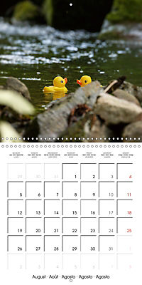 Bath duck Race (Wall Calendar 2019 300 × 300 mm Square) - Produktdetailbild 8