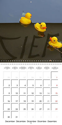 Bath duck Race (Wall Calendar 2019 300 × 300 mm Square) - Produktdetailbild 12