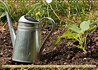 Bauerngarten - bunte Vielfalt (Wandkalender 2019 DIN A4 quer) - Produktdetailbild 3