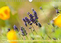 Bauerngarten - bunte Vielfalt (Wandkalender 2019 DIN A4 quer) - Produktdetailbild 8