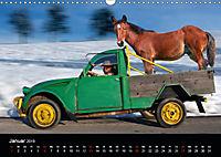 BAUERNSCHLAU 2019 (Wandkalender 2019 DIN A3 quer) - Produktdetailbild 1