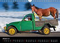BAUERNSCHLAU 2019 (Wandkalender 2019 DIN A4 quer) - Produktdetailbild 1