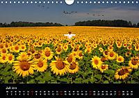 BAUERNSCHLAU 2019 (Wandkalender 2019 DIN A4 quer) - Produktdetailbild 7