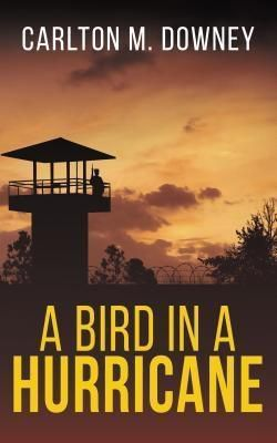 Bayou Press: A Bird in a Hurricane, Carlton M Downey
