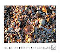 Beach Planer, Streifenkalender 2019 - Produktdetailbild 12