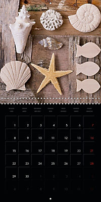 Beach treasures 2019 (Wall Calendar 2019 300 × 300 mm Square) - Produktdetailbild 4