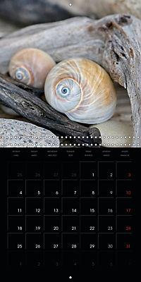 Beach treasures 2019 (Wall Calendar 2019 300 × 300 mm Square) - Produktdetailbild 3