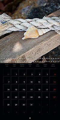 Beach treasures 2019 (Wall Calendar 2019 300 × 300 mm Square) - Produktdetailbild 1