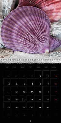 Beach treasures 2019 (Wall Calendar 2019 300 × 300 mm Square) - Produktdetailbild 11