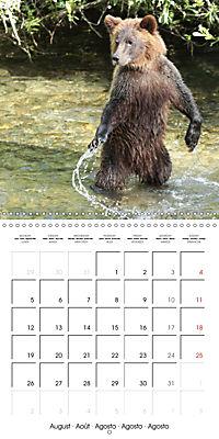 Bears funny moments (Wall Calendar 2019 300 × 300 mm Square) - Produktdetailbild 8