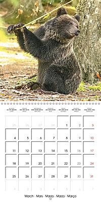 Bears funny moments (Wall Calendar 2019 300 × 300 mm Square) - Produktdetailbild 3
