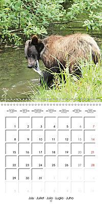 Bears funny moments (Wall Calendar 2019 300 × 300 mm Square) - Produktdetailbild 7