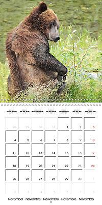 Bears funny moments (Wall Calendar 2019 300 × 300 mm Square) - Produktdetailbild 11