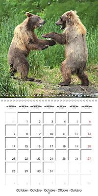 Bears funny moments (Wall Calendar 2019 300 × 300 mm Square) - Produktdetailbild 10