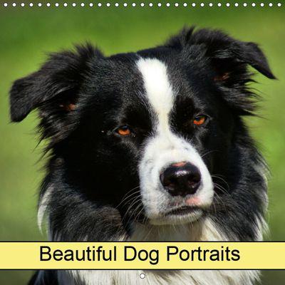 Beautiful Dog Portraits (Wall Calendar 2019 300 × 300 mm Square), kattobello