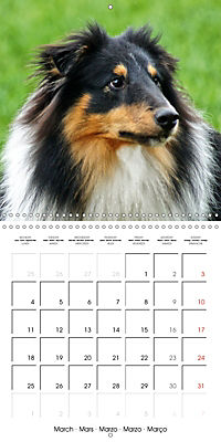 Beautiful Dog Portraits (Wall Calendar 2019 300 × 300 mm Square) - Produktdetailbild 3