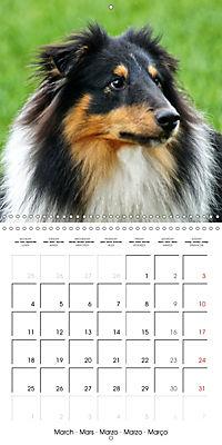 Beautiful Dog Portraits (Wall Calendar 2019 300 × 300 mm Square) - Produktdetailbild 3