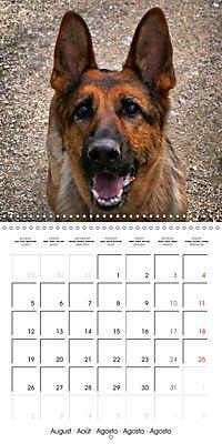 Beautiful Dog Portraits (Wall Calendar 2019 300 × 300 mm Square) - Produktdetailbild 8
