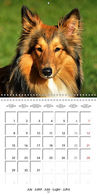 Beautiful Dog Portraits (Wall Calendar 2019 300 × 300 mm Square) - Produktdetailbild 7