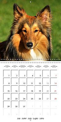 Beautiful Dog Portraits (Wall Calendar 2019 300 × 300 mm Square) - Produktdetailbild 7