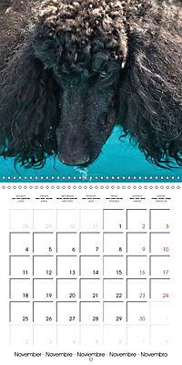 Beautiful Dog Portraits (Wall Calendar 2019 300 × 300 mm Square) - Produktdetailbild 11