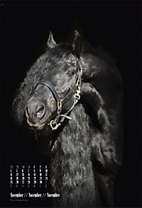 Beautiful Horses 2019 - Produktdetailbild 11