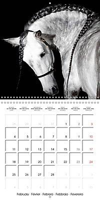 BEAUTIFUL HORSES (Wall Calendar 2019 300 × 300 mm Square) - Produktdetailbild 2