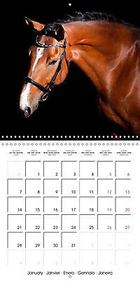 BEAUTIFUL HORSES (Wall Calendar 2019 300 × 300 mm Square) - Produktdetailbild 1