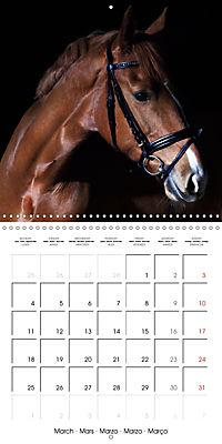 BEAUTIFUL HORSES (Wall Calendar 2019 300 × 300 mm Square) - Produktdetailbild 3