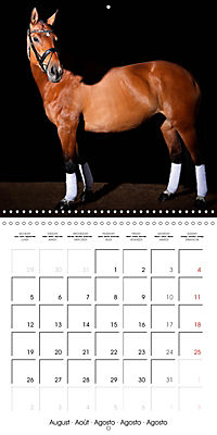 BEAUTIFUL HORSES (Wall Calendar 2019 300 × 300 mm Square) - Produktdetailbild 8