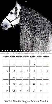 BEAUTIFUL HORSES (Wall Calendar 2019 300 × 300 mm Square) - Produktdetailbild 11
