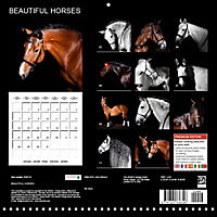 BEAUTIFUL HORSES (Wall Calendar 2019 300 × 300 mm Square) - Produktdetailbild 13