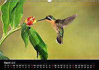 Beautiful Hummingbirds (Wall Calendar 2019 DIN A3 Landscape) - Produktdetailbild 3