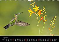 Beautiful Hummingbirds (Wall Calendar 2019 DIN A3 Landscape) - Produktdetailbild 7