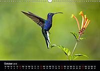 Beautiful Hummingbirds (Wall Calendar 2019 DIN A3 Landscape) - Produktdetailbild 10