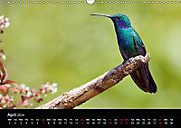 Beautiful Hummingbirds (Wall Calendar 2019 DIN A3 Landscape) - Produktdetailbild 4
