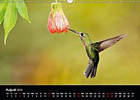Beautiful Hummingbirds (Wall Calendar 2019 DIN A3 Landscape) - Produktdetailbild 8
