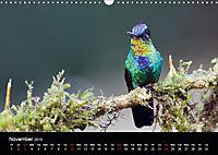 Beautiful Hummingbirds (Wall Calendar 2019 DIN A3 Landscape) - Produktdetailbild 11