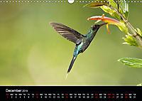 Beautiful Hummingbirds (Wall Calendar 2019 DIN A3 Landscape) - Produktdetailbild 12