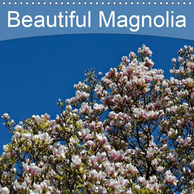 Beautiful Magnolia (Wall Calendar 2019 300 × 300 mm Square), Hanns-Peter Eisold